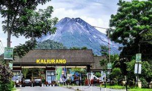 Wisata Gunung Merapi Di Jogja